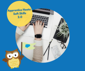 Apprentice Hoots: Soft Skills 2.0