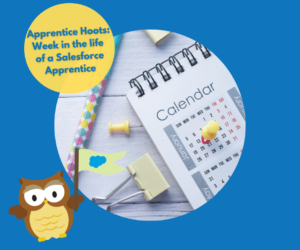 Apprentice Hoots: Week in the life of a Salesforce Apprentice
