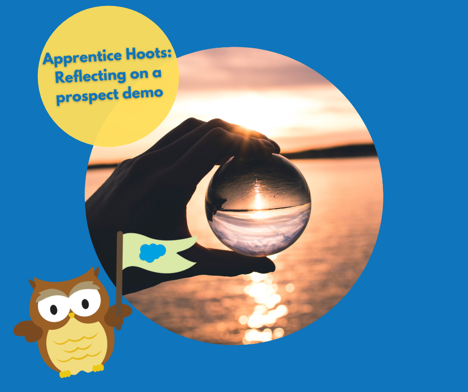 Apprentice Hoots: Reflections on preparing a prospect demo