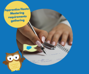 Apprentice Hoots: Mastering requirements gathering